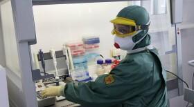 В России выявили первые два случая заражения коронавирусом