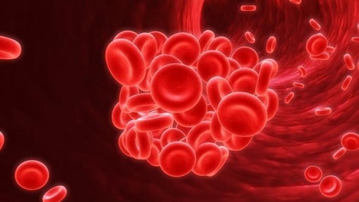 Ученые нашли возможную причину тромбообразования при COVID-19