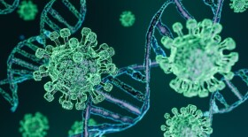 Ученые: новый штамм коронавируса может быть более контагиозным