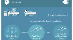 Американское общество гематологов выпустило рекомендации по антикоагулянтной терапии для пациентов с COVID-19
